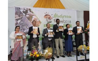 First Mushroom Festival in Meghalaya