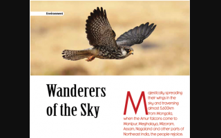 Wanderers of the Sky