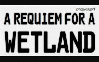 A Requiem for a Wetland