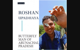 ROSHAN UPADHAYA:BUTTERFLY MAN OF ARUNACHAL PRADESH
