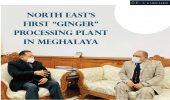 """North East's first """"Ginger"""" Processing Plant in Meghalaya"""
